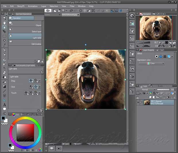 Clip-Studio-Paint-EX.jpg
